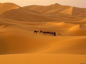 desierto-del-sahara1